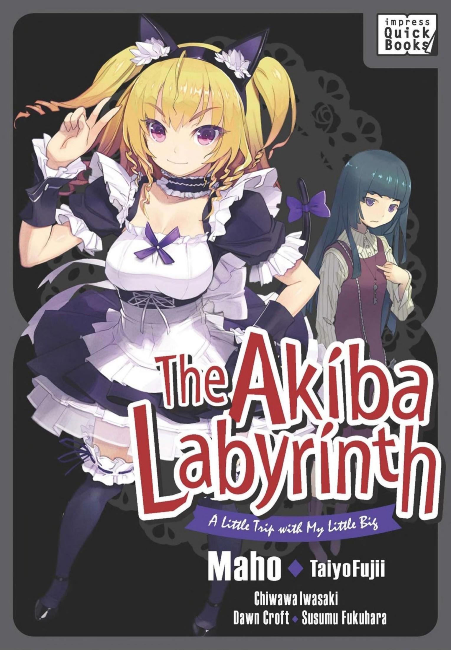 Das Cover von The Akiba Labyrinth - A Little Trip with my Little Big von Impress Quick Books