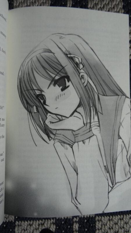 Ein Blick auf eine Illustration vorne im Buch der Print-Version.